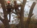Bergholz Climbers